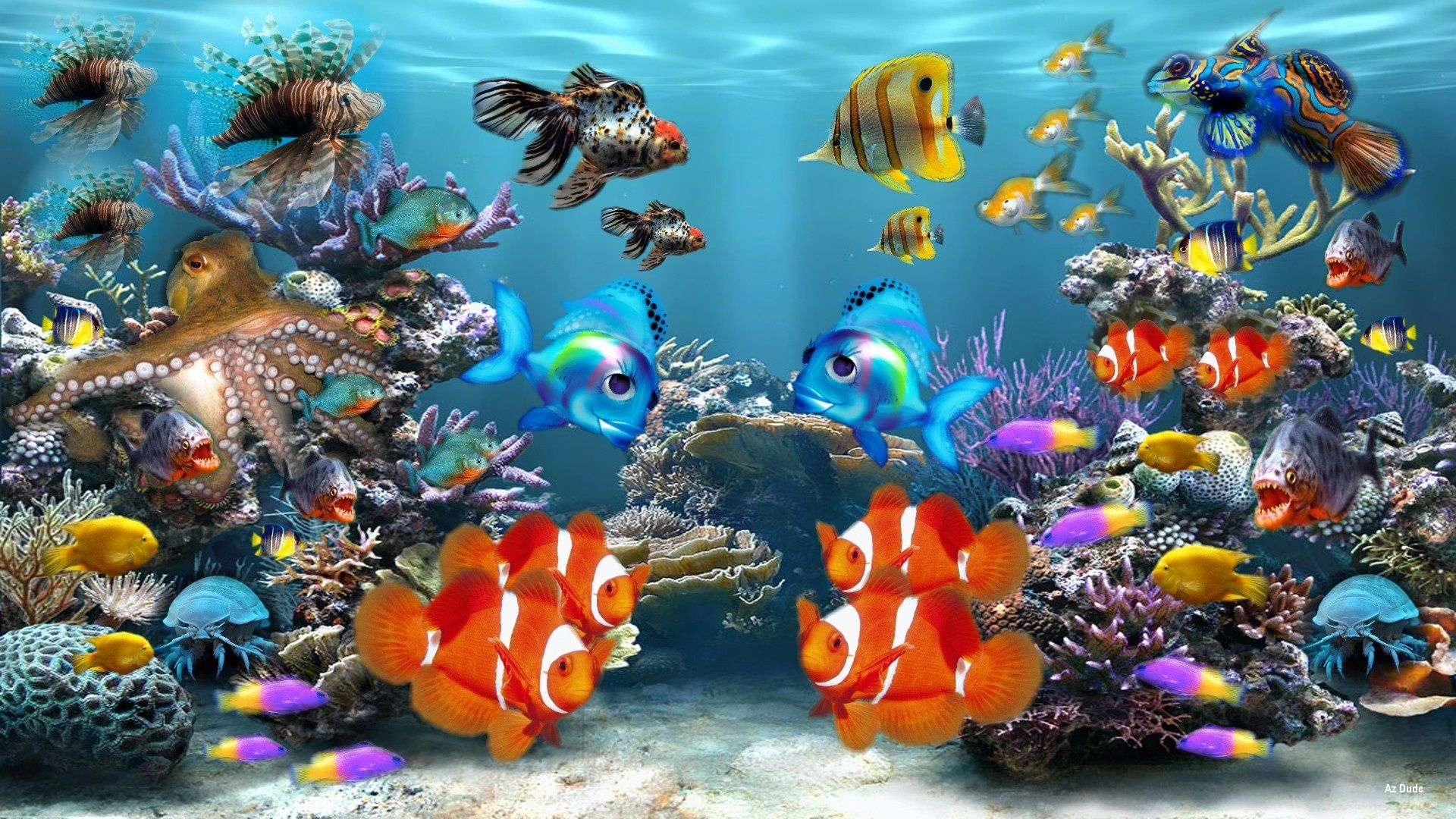 HD Fish Background, descargar la imagen de un fondo de pantalla de peces HD natural