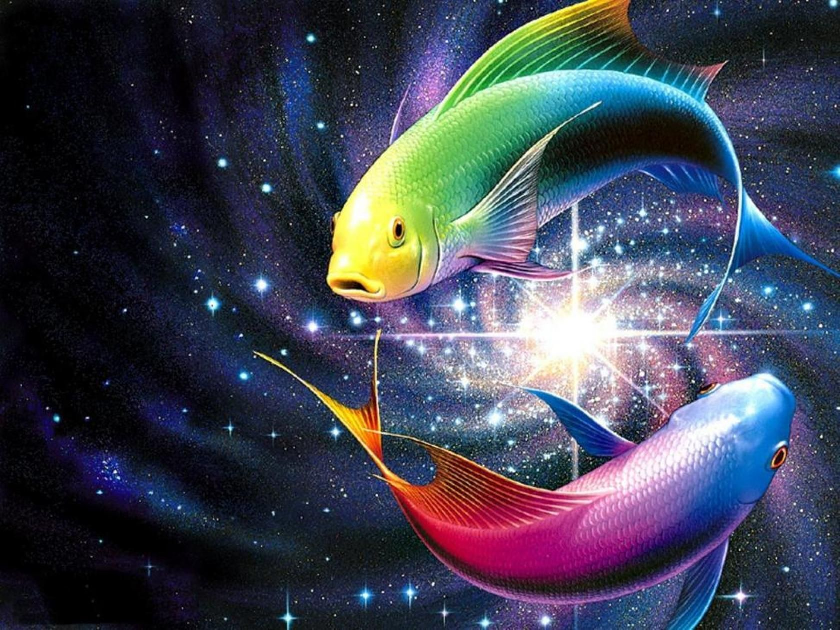 Rainbow Fish Wallpapers HD | ¡Papel pintado! El | Fondo de pantalla de pescado, arco iris