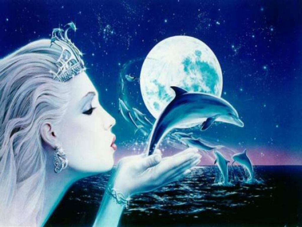 Cute dolphin wallpapers Gallery