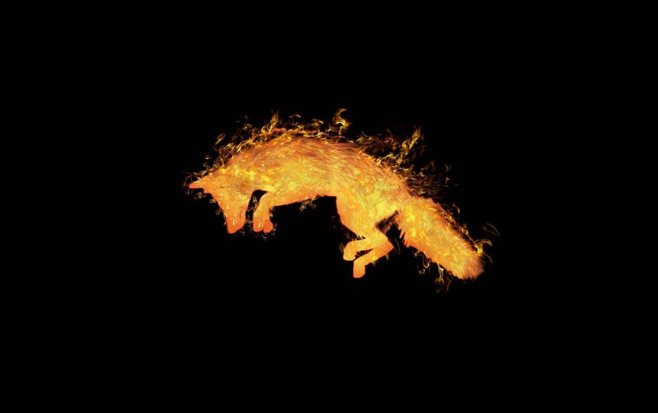 Fire Fox fondos de pantalla | Fire Fox fotos gratis