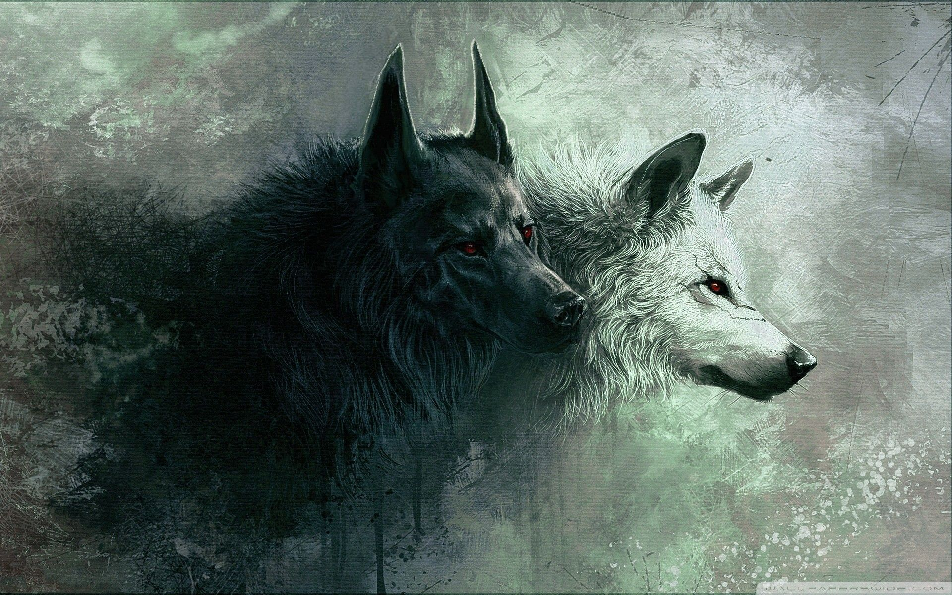 79+ Wolf Hd Wallpapers