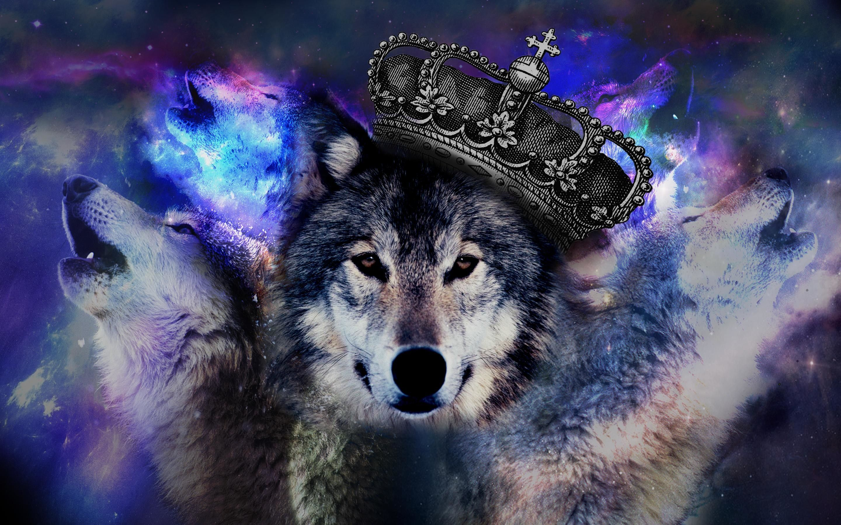 Trippy Wolf Wallpapers (66+ imágenes)