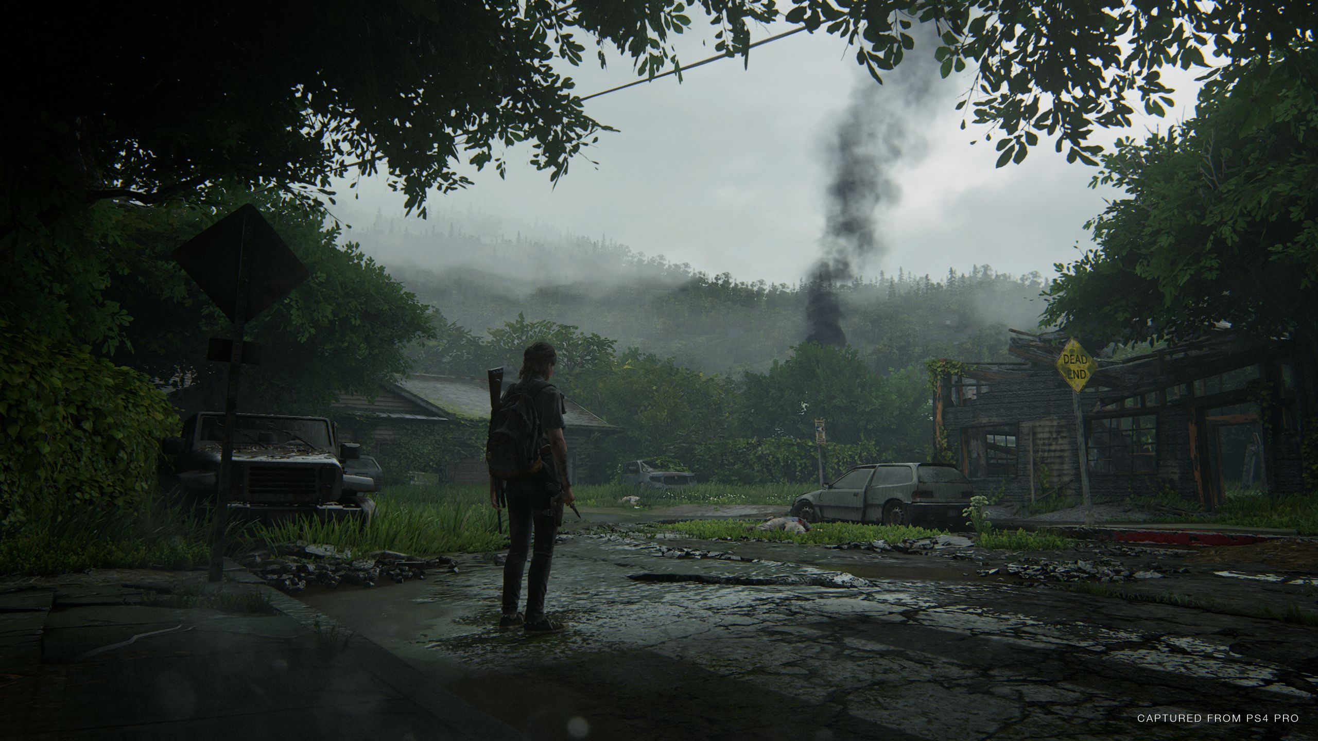 Fondo de pantalla de The Last of Us 2560x1440
