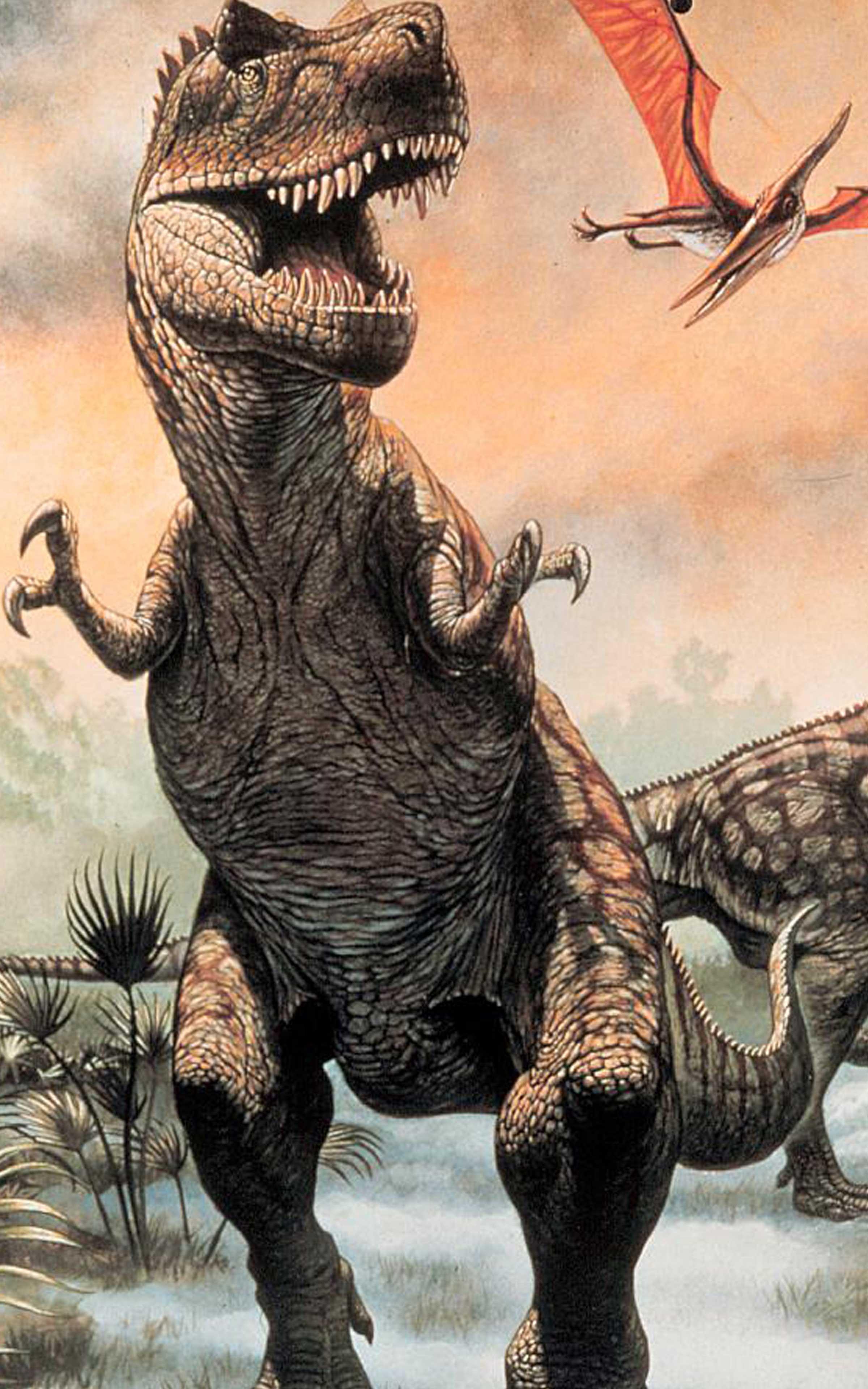 Fondos De Pantalla De Dinosaurios Fondosmil Los sorprendentes animales que se han extinguido desde hace mucho tiempo están ahora al alcance de su mano con la ayuda de la última dinosaurio vivo fondos de. fondos de pantalla de dinosaurios